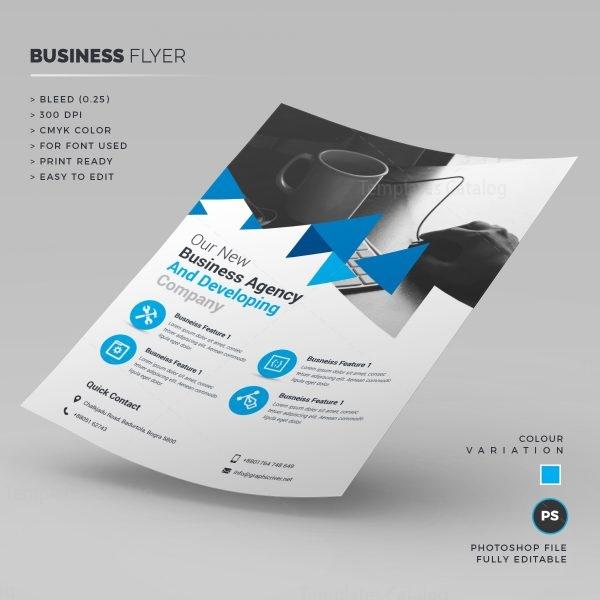 Elegant Company Business Flyer 1
