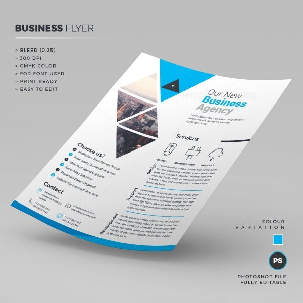 Print Ready Corporate Flyer 1