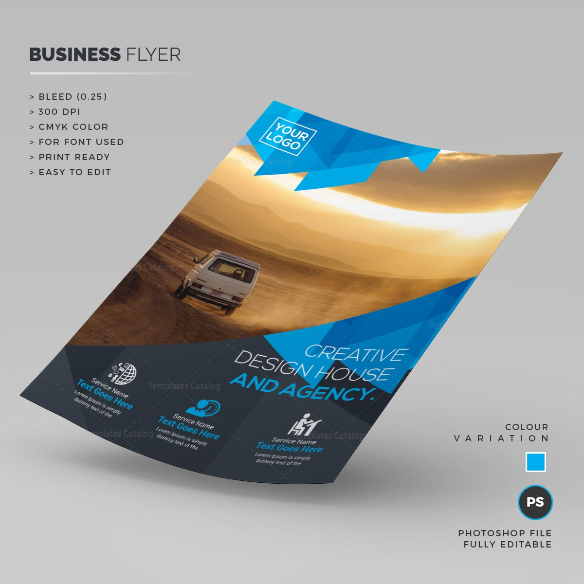 safari corporate flyer template 000253 template catalog. Black Bedroom Furniture Sets. Home Design Ideas