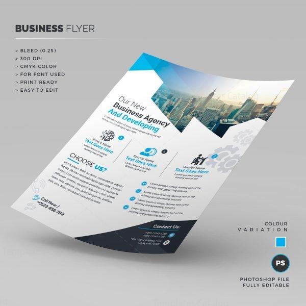 Stylish Corporate Flyer Template 1
