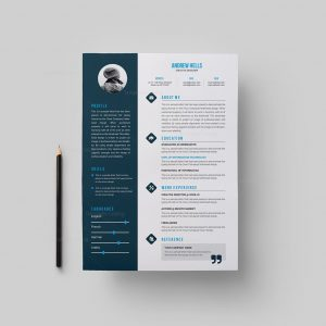 Resume Template with Elegant Style