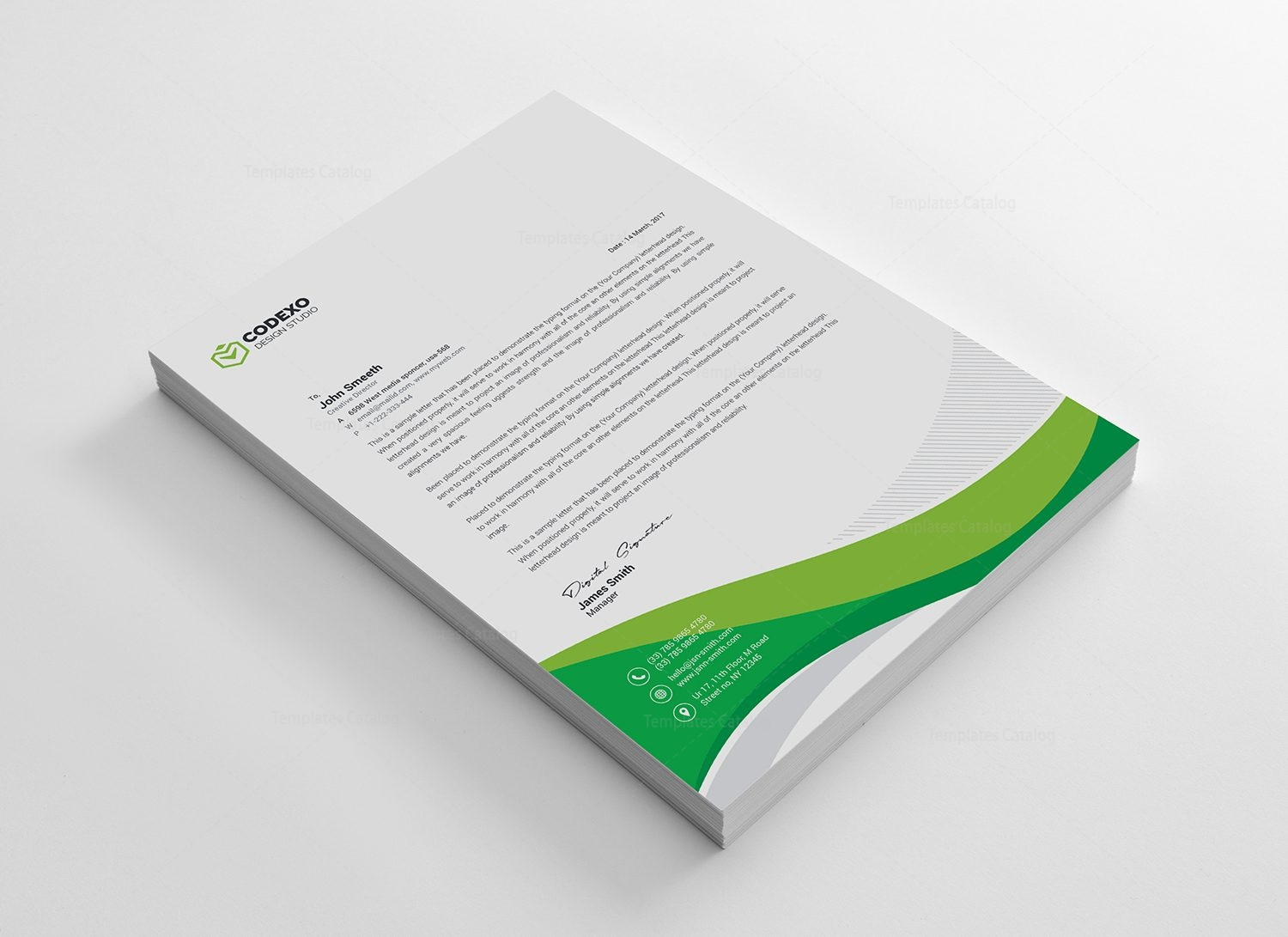 Professional letterhead sample 000497 template catalog professional letterhead sample 5 thecheapjerseys Image collections