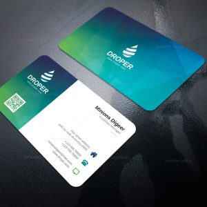 Dolphin Modern Corporate Business Card Template