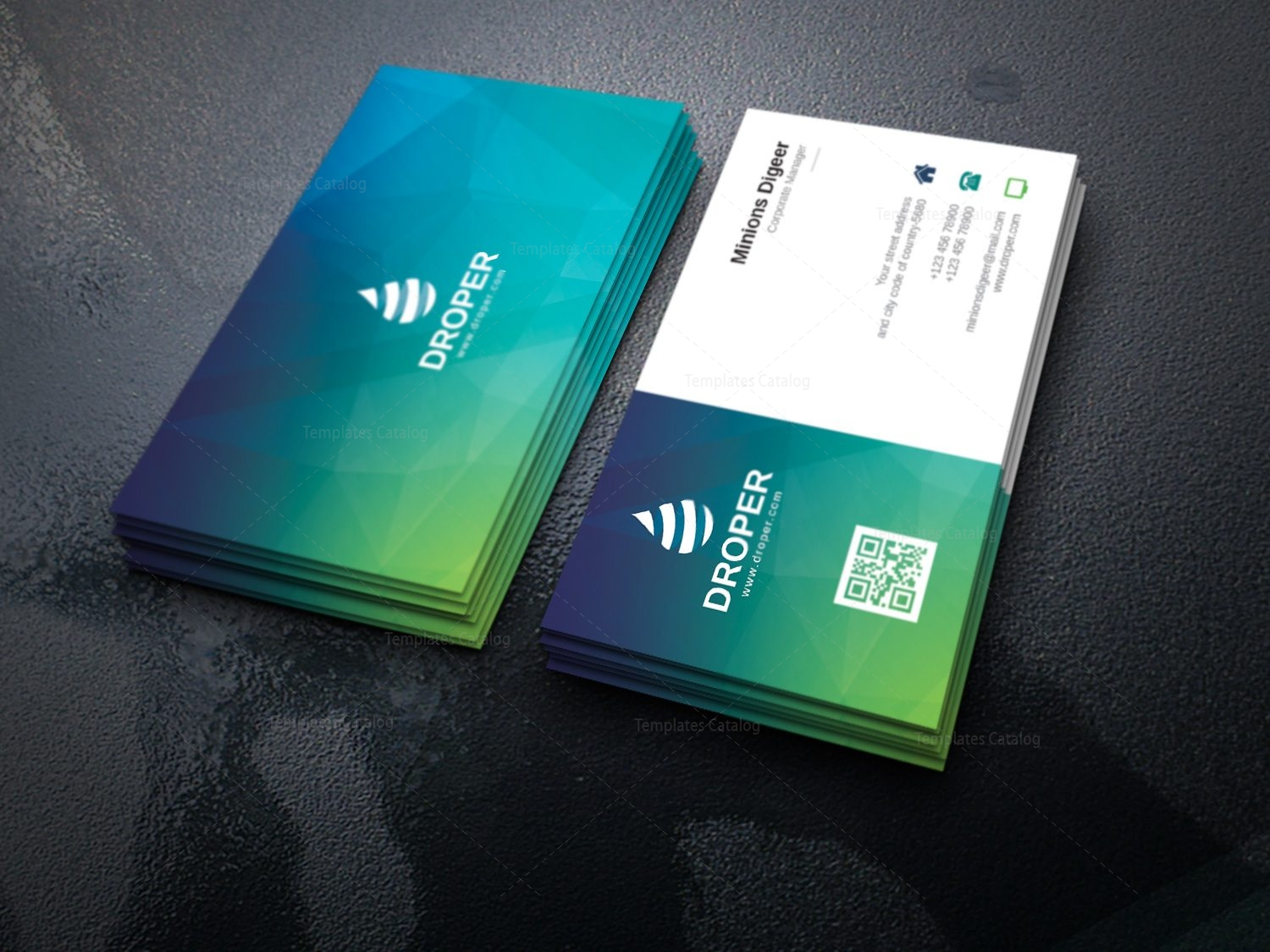 Dolphin modern corporate business card template 000924 template dolphin modern corporate business card template 2 cheaphphosting Images
