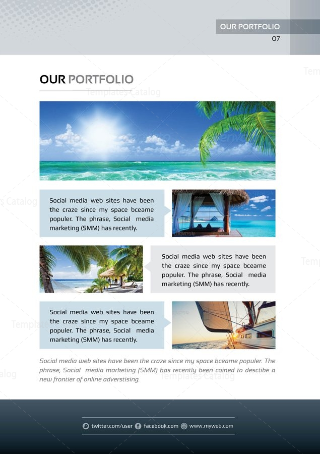 Present Premium Business BiFold Proposal Template   Template