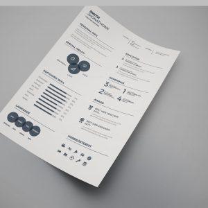 Plain Professional Resume Design Template