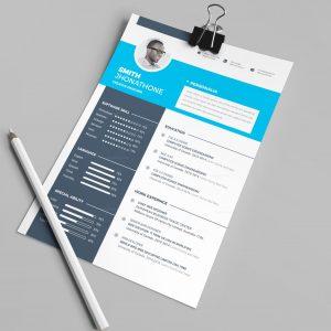 Texas Professional Resume Design Template
